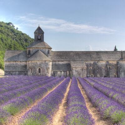 Abbaye de Senanque with lavender - Flickr - Salva Barbera