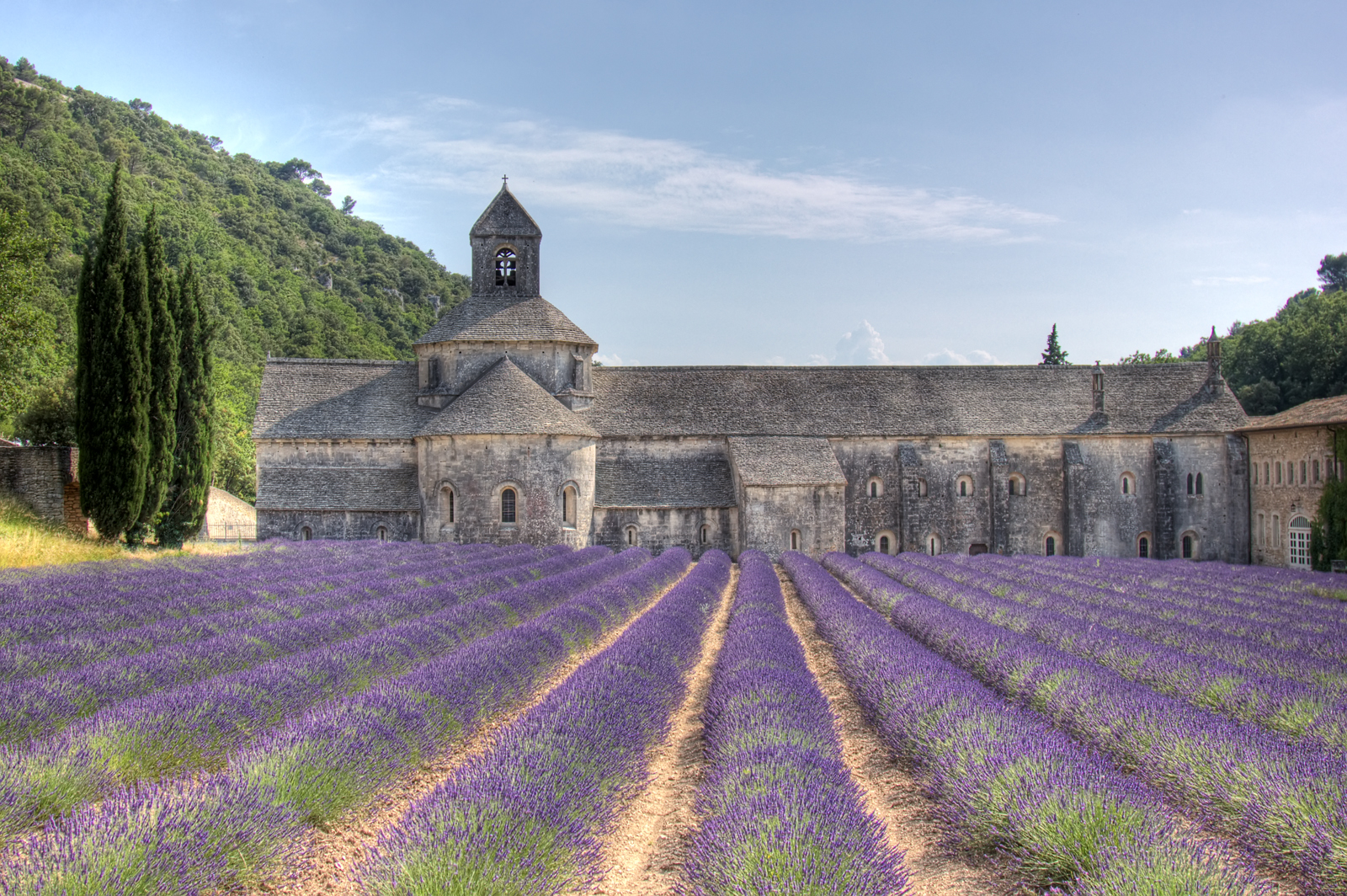 Abbaye de Senanque with lavender - Flickr - Salva Barbera