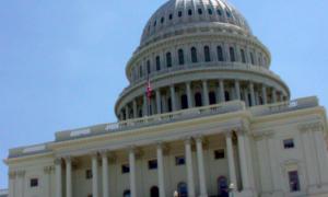 U.S. Capitol 300x180