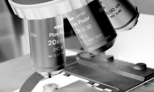 microscope 300x180