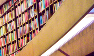 books in library 300x180