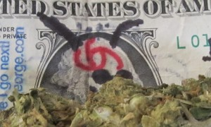 marijuana and money - Raquel Baranow 900x540