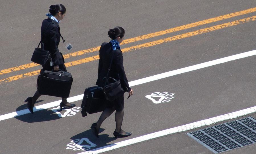 flight attendants - Miki Yoshihito