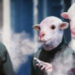 pasadena-sheep-900x540